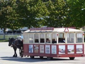 HorseTrolley